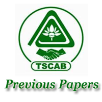 TSCAB Manager Previous Papers